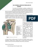 BIOMECANICA DEL HOMBRO; EJERCICIOS PENDULARES DE CODMAN