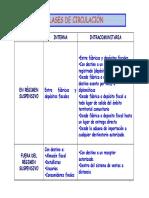 8_Esquemas básicos circulación.pdf