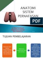 anatomi sistem pernafasan.ppt