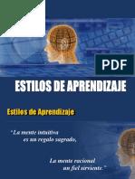 Presentación Para Los Estilos de Aprendizaje Año 2009