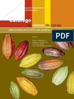 Descriptor de Cacao