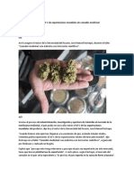 Cannabis Proyecto