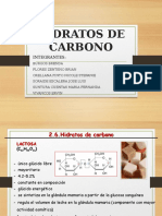 Hidratos de Carbono Exposicion