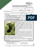 examendecomprensionlectoraquintogrado-131009011618-phpapp01.pdf