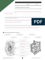305306656-6epcn-Sv-Es-Ud01-Div-So.pdf
