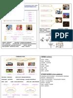 Social Science Grade 2 Summary Unit 5