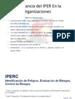 Importancia Del IPER en La Organizaciones