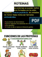 Proteinas Final