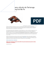 Programa Para Cálculo Da Tartaruga Mística