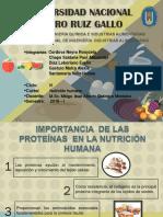 SEMINARIO PROTEÍNAS.pdf