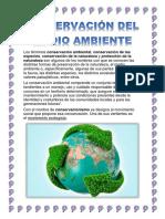 Preservación Del Medio Ambiente