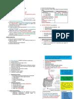 Fisiopatología de Anemia