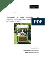 Seminario de Título. Maximiliano Picon