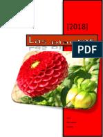 las-plantas (1).docx
