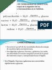Bioquimica Introduccion III Metabolismo Carbohidratos y Liquidos en El Cuerpo