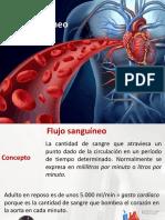 Ponencia Sistema Flujo Sanguineo