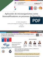 326283943-1-Pedro-Galleguillos-CICITEM-pdf.pdf