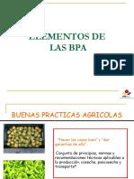 - D.T - Elementos de Las BPA (1)
