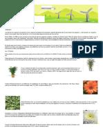 10 plantas que te oxigenan plantas oxigenadoras (1).pdf