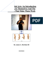 SCIENCE OF MARTIAL ARTS:jhawkins thesis.pdf