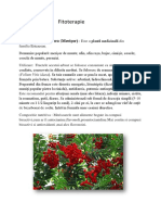Fitoterapie.docx