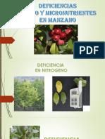Deficiencias en Manzano