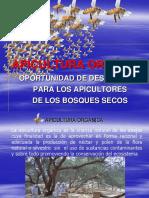 Apicultura Organica Por Victor Raul Abad