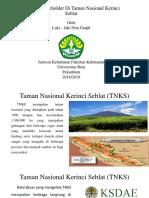 Analisis Stakeholder Di Taman Nasional Kerinci Seblat