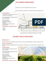 diseño etapas bioclimatica