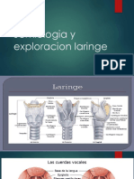 Semiologia y Exploracion Laringe