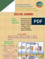 Ciclo Del Carbono2