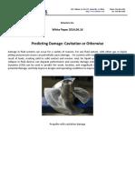 Predicting Cavitation Damage Reg