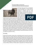 El Búfalo, Un Animal de Importancia Para Los Indígenas Norteamericanos