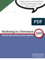 Marketing in a Downturn E-book