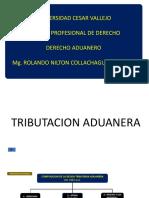 Tributación Aduanera. Regímenes Aduaneros y Su Importancia