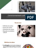 Culture Et Environnement Culturel
