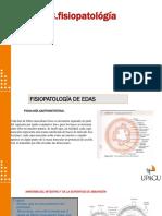 FISIOPATOLOGIA-EDAS