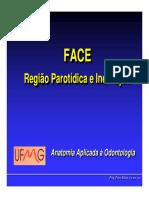 nervofacial.pdf