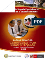 Enfoque por competencias-MINEDU.pdf