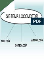 Sistema_Locomotor.pdf
