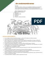 Unidad 3 -Sistemas de Endomembranas.docx