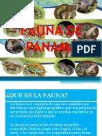 Fauna de Panamá