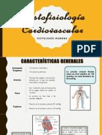 Histofisiología Cardiovascular