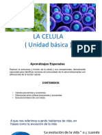 Clase 1- Celula (1)