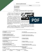 Guía 2  cuarto básico SIMCE.docx