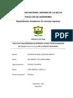 AVILA RODRIGURZ---Examen Proyecto de Tesis RT 2018-I