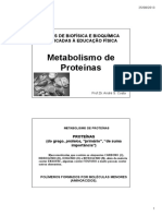 Aula Metabolismo de Proteínas