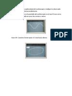 calculos 2.docx
