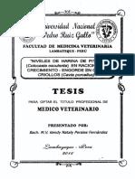 pituca.pdf