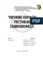 Informe Espacio Vectorial